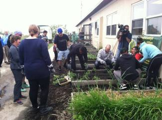 MLB Players Sustainable Garden